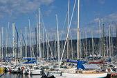 Trieste — Stock Photo