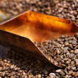 Copper spoon in coffee beans — Stock Photo #12494237
