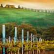 Rural countryside in Italy region of Tuscany — Stock Photo