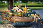 Beautiful autumn decoration — Stock Photo