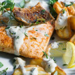 Roast salmon - fish — Stock Photo #13723797