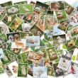 Dog collage - 101 pieces — Stock Photo