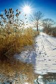 Un día de invierno soleado bonito un día de invierno soleado bonito — Foto de Stock