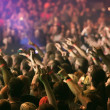 Crowd cheering and hands raised at a live music concert — Stock Photo #24817849