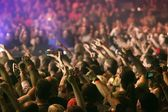 Crowd cheering and hands raised at a live music concert — 图库照片