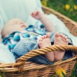 Little boy lying in wicker baske — Stock Photo