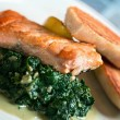 Salmon and spinac — Stock Photo