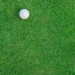 Golf Ball on the Grass for web background — Stock Photo