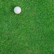 Stock Photo: Golf Ball on the Grass for web background