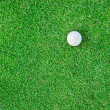 Golf Ball on the Grass for web background — Stock Photo #36035235