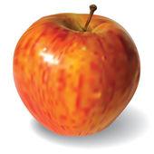 孤立在白色背景上的红苹果 — 图库矢量图片
