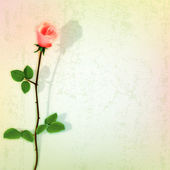 Abstract dark background with red rose on green — Stock vektor