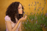 Beautiful lady with lavender — Stock Photo
