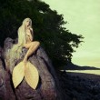 Beautiful mermaid sitting on rock — Stock Photo