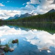 Mountain panorama from Herbert Lake — Stock Photo