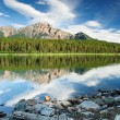 Stock Photo: PatriciLake, Jasper national park