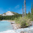 River on the icefield parkway in Jasper National Park — Stock Photo
