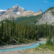 River on icefield parkway in Jasper National Park — Stock Photo #19009743