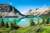 Bow Lake Panorama — 图库照片