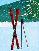 Red ski — Stock Vector