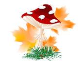 Red mushroom — Stock Vector