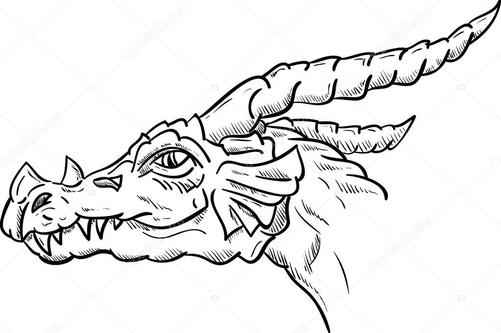 Dragon Head Stock Photos And Images 4982