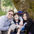 Disabled boy in wheelcahir surrounded by father and sister - Stock Photo