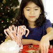 Little girl counting money at Christmas - Stock Photo