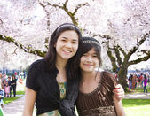 Two girls standing in front of large flowering cherry tree — Stock Photo