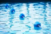 Blue water buoys in pool, shallow dof — Stockfoto