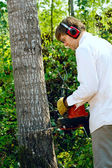 Caucasian man cutting down a tree with a chainsaw — 图库照片