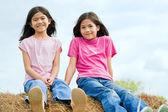 Haybale の上に座っている 2 人の若い女の子 — ストック写真