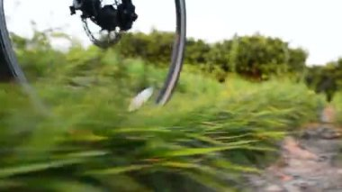 Senior couple riding bicycles.Going by Bike, Low Angle View. — Stockvideo