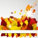 Autumn season background. — Stock Vector
