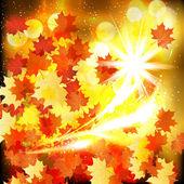 Autumn leaves design background. — Stock Vector