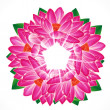 Water lily flower background. — Stock Vector