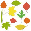 Vector de stock : Autumn elements for design
