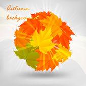 秋のデザイン — ストックベクタ