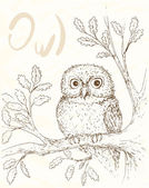 Owl illustation 1 — Stock Vector