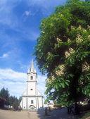 Blooming chestnut tree near the Reformed Church in Tyachiv, Ukra — Stock Photo