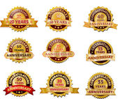 Anniversary gold badge set — Stock Vector