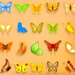Set of realistic vector butterflies  — Stock Vector