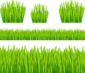 Resumen de antecedentes con la hierba — Vector de stock