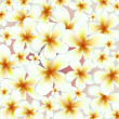 Vector flowers background — Stock Vector #13676928