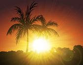 Palme al tramonto — Vettoriale Stock