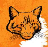 Cat drawing vector on grunge background — Stockvektor