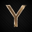 Vector metallic font on a metal grid. Letter Y - Foto Stock