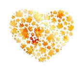 I love gold autumn. — Stock Vector