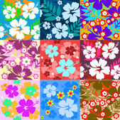 Big set Hibiscus flower seamless Background — Stock Vector