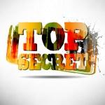 TOP SECRET Grunge Text — Stock Vector #33123453